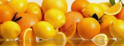 oranges grapefruits lemons citron