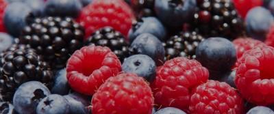 bg-scheda-piccoli-frutti