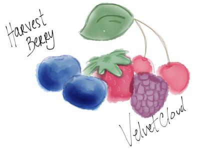 harvest_berry_03