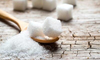 Sugar zucchero