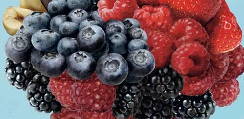 frutti di bosco slide