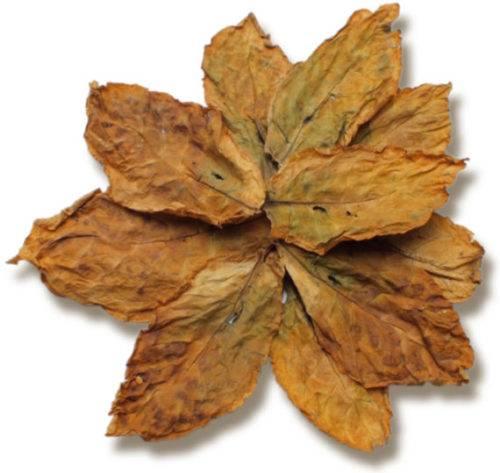 Basma Leaves tobacco e1548005289154