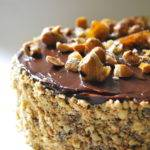 Hazelnut Cake (Solido)