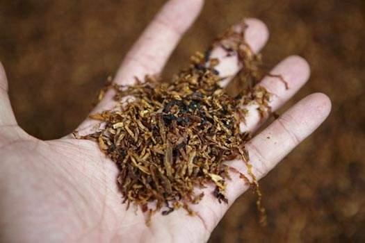tabacco biondo03